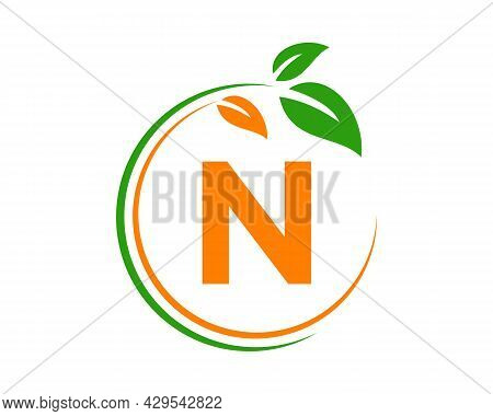 Eco Logo With N Letter Concept. N Letter Eco Healthy Natural Logo