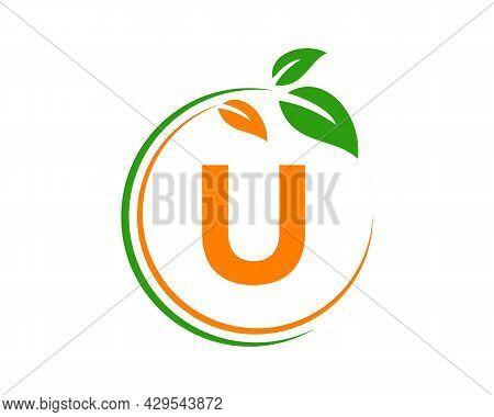 Eco Logo With U Letter Concept. U Letter Eco Healthy Natural Logo