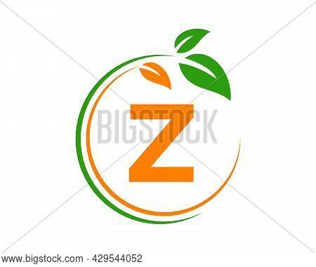 Eco Logo With Z Letter Concept. Z Letter Eco Healthy Natural Logo