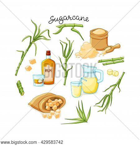 Cane Sugar With Stem And Leaf Plants And Products Set On A White Background. Freshly Squeezed Cane J
