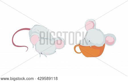 Cute Funny Mouse Characters Set. Lovely Little Sleeping Mice Cartoon Vector Illustration