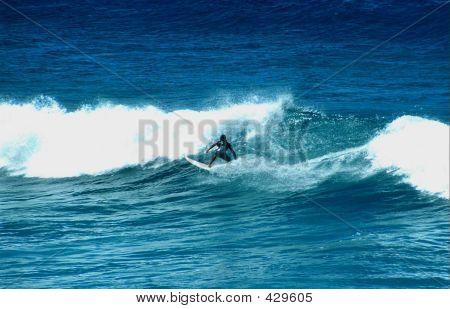 Surfer At Cabarita