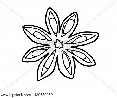 Star Anise - Spices Vector Linear Illustration For Coloring Pages Or Logo. Outline. Spices - Star An