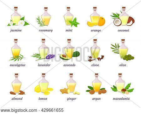 Cosmetic Essential Oil Bottle With Herb, Fruit And Flower. Lavender, Argan, Coconut And Almond Nut O