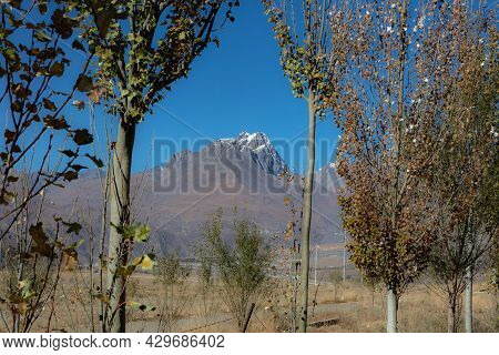 Snow Covered Mountain Of The Himalaya In Between Trees On A Tour Through Tibet. Holy Mountain Of Kai