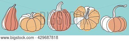 Agriculture, Autumn, Celebration, Circle, Crop, Delicious, Diet, Doodle, Edible, Engraving, Environm
