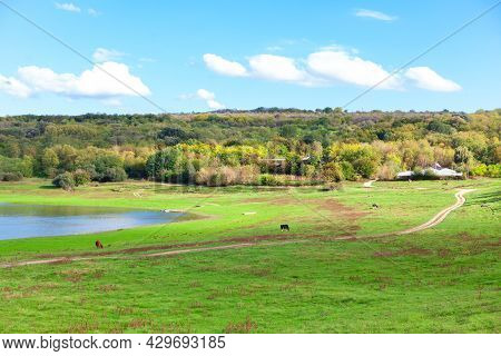 Rustic Scenery With Green Meadow And River . Peaceful Scenery , Village Riverside