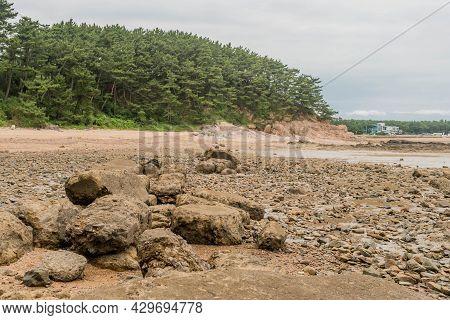 Sections Of Broken Seawall