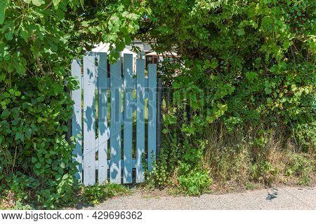 Small Wooden Door, Entrance To A Garden. Blue Wooden Door.