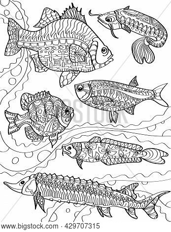 Different Ocean Fishes Swimming Against The Currents Colorless Line Drawing. Community Of Fish Swims