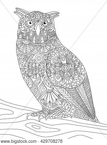 Close Up Owl Standing On A Branch Looking Side Colorless Line Drawing. Nightowl Looks Sideward Stand