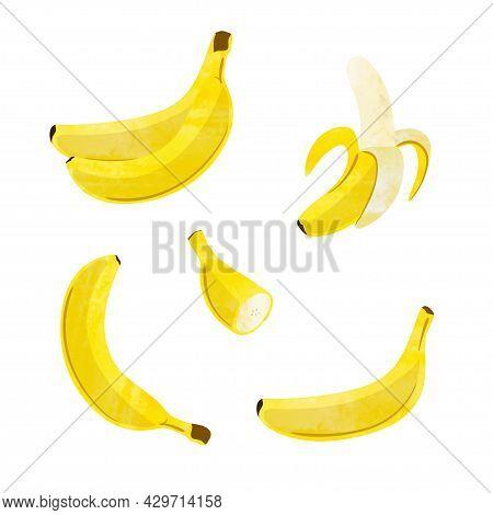 Banana Set. Vector Illustration Of Single, Peeled Fruit And Bunch Of Bananas Isolated On White Backg