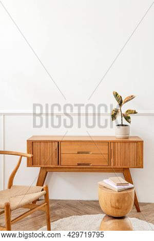 Rubber plant on a wooden sideboard table