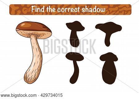 Find Correct Boletus Shadow Educational Game For Kids. Shadow Matching Activity For Children With Ed