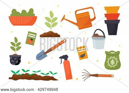 Set Of Gardening Tools, Seeds And Seedlings On White Background. Germination Of Sprouts. Concept Of