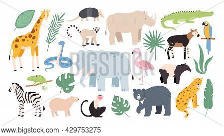 Flat Wild Safari Animals From Rainforest And Savanna. Jungle Forest Birds, Monkey And Snake. African