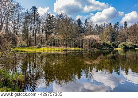 Bare Trees, Green Bushes, White Clouds And Blue Sky Reflected In The Water Surface Of A Lake, Sunny