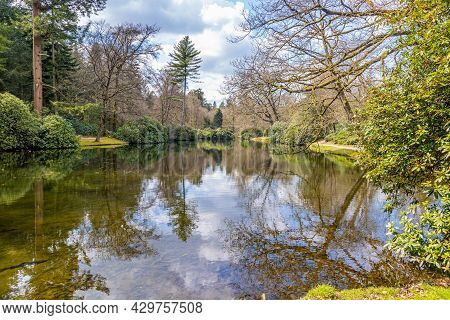 Lake With Mirror Reflection Of Green Bushes, Bare Trees, White Clouds And Blue Sky Reflected On The