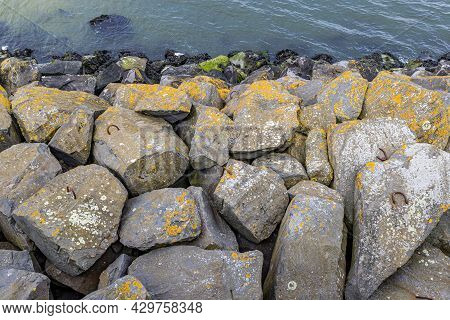 Moss Covered Stones On A Breakwater Along The Delta Works. Rhine-meuse-scheldt Delta, Sunny Day In S