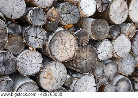 Close-up Of Sawn Logs Stacked In A Pile.