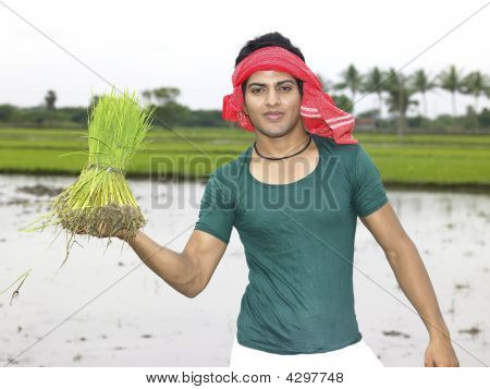poster of an indian farmer working in his paddy field