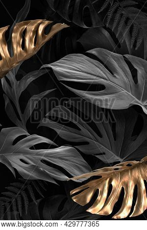 Gold and black Monstera Deliciosa leaves