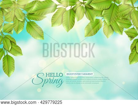 Green Branches Of Deciduous Tree In Rays Of Spring Sun At Blue Sky And White Clouds Background Flat