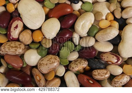 Mixed Dried Beans Colorful Bean Mix Close Up