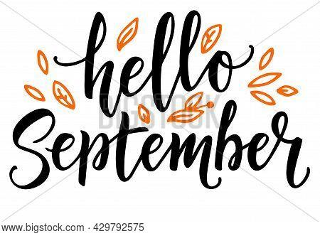 Hello September Calligraphy. Hello Autumn Greeting Card. Hand-drawn Illustration. Modern Vector Call