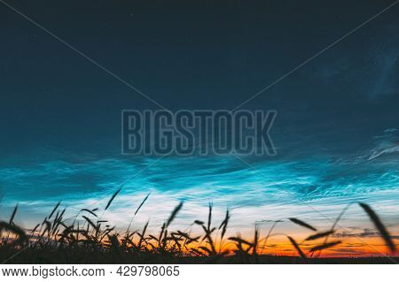 Time Lapse 4k Night Starry Sky With Glowing Stars Above Countryside Landscape. Noctilucent Clouds Ab