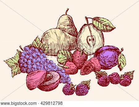 Still-life Of Various Drawn Fruit. All Objects Isolated