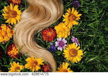 A Lock Of Blond Hair Among The Flowers, On The Green Grass. Hair Health Concept, Natural Ingredient