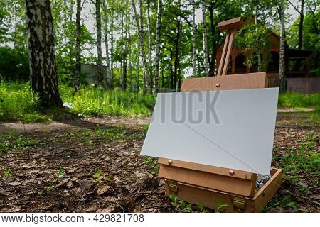 Artist Canvas Plein Air. An Easel For Close-up Painting In A Birch Forest. The Concept Of Creativity