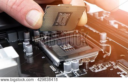 Electronic Engineer Installing Microprocessor. Maintenance Computer Cpu Hardware. Hand Holding A Com
