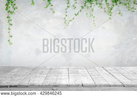 Light Gray Wooden Planks For The Floor With Concrete Wall And Green Ornamental Plants Or Ivy Is Outd