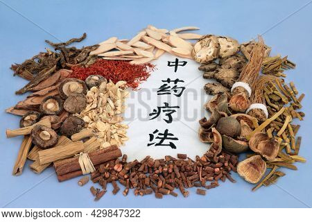Herbs and spice used in Chinese herbal plant medicine with calligraphy script on rice paper. Natural  holistic health care concept Translation reads as traditional Chinese herbal therapy.