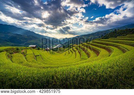 Sunset Over Terraced Rice Fields, Mu Cang Chai, Yen Bai, Vietnam