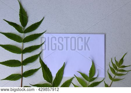 Close-up Of Blank Sheet Of Paper With Green Leave On White Table.  Greeting Card Mock-up. Flat Lay,
