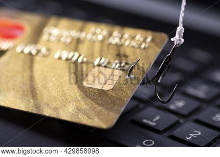 Internet Fraud Using Computer Technology, Stealing Money On The Internet, Stealing Credit Card Data.