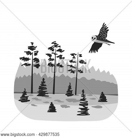 Evening In The Forest. Owl Is Flying. Vector Black And Gray Image.