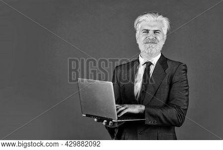Remote Control. Successful Business. Businessman Notebook Office. Internet Technology Modern Busines