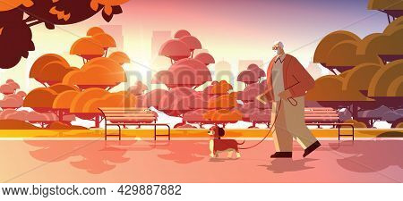Active Senior Man Walking In Park With His Little Dog Grandfather Relaxing With Pet Sunset Cityscape