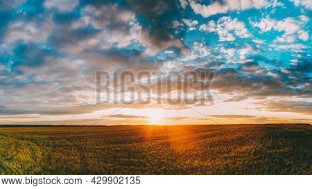 Panorama Of Sunset Sunrise Over Field Or Meadow. Bright Dramatic Sky Over Ground. Countryside Landsc