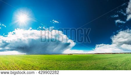 Countryside Rural Field Or Meadow Landscape With Green Grass Under Spring Blue Sky With White Fluffy