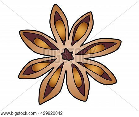 Star Anise - Spices Vector Full Color Illustration For A Logo. Spices - Star Anise - Vector Element