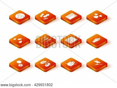 Set Orange Fruit, Lungs, Sesame Seeds, Wheat, Parasite Mite, Monitor With Cardiogram, Honeycomb Hone