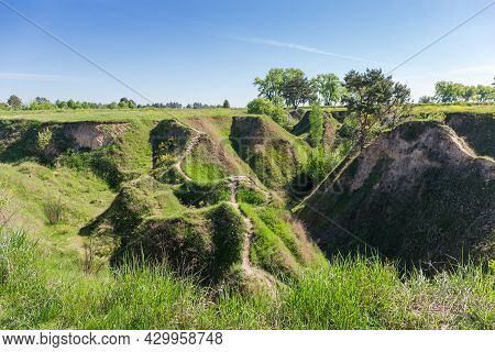 Top Of Deep Branched Ravine With Steep Precipitous Clay Slopes Overgrown With Grass And Single Trees
