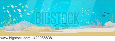 Underwater Ocean Fauna With Exotic Fishes. Ocean Bottom With Marine Life Reprsentatives. Marine Unde