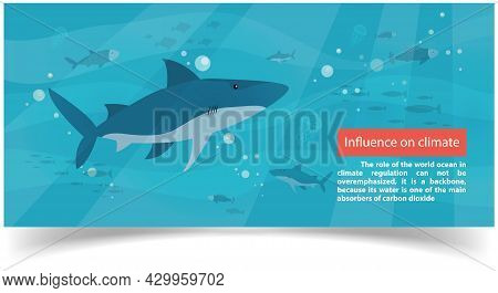 Influence On Climate Information Banner With Underwater Ocean Life Of Sharks, Jellyfish And Fish. Wo