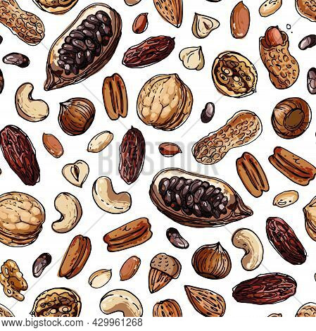 Nuts Seampless Pattern Vector Color Food. Walnuts, Cocoa, Cashews, Dates, Hazelnuts